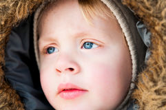 Beautiful blond boy in winter clothing Stock Photos