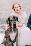 Beautiful blond bride with bright red lips holds her dog close up.  Royalty Free Stock Image