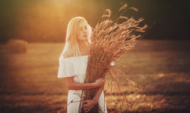 Beautiful blond in field Stock Photography