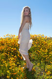 Beautiful blond in flower field Royalty Free Stock Photography