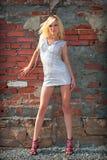 Beautiful blond girl beside brick wall Stock Photos
