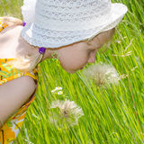 Beautiful blond girl in hat and flower Royalty Free Stock Photography
