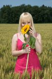 Beautiful blond girl hiding behind a sunflower Royalty Free Stock Photo