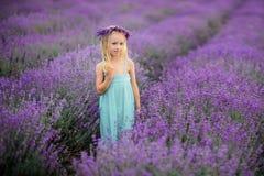 Beautiful girl on the lavender field. Beautiful blond girl on the lavender field stock photos
