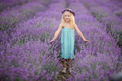 Beautiful girl on the lavender field stock photography