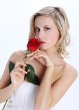 Beautiful blond girl with red rose flower on a white background Royalty Free Stock Photos