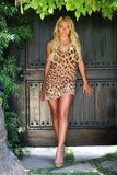 Beautiful blond model outdoors Stock Photos