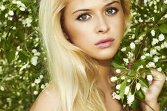 Beautiful blond woman with apple tree. summer Royalty Free Stock Photo
