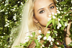 Beautiful blond woman with apple tree. summer Stock Images
