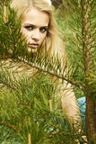 Beautiful blond woman behind a pine Royalty Free Stock Image