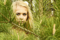 Beautiful blond woman behind a pine Stock Photos