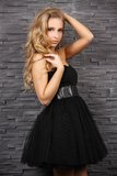 Beautiful blond woman in black dress. Posing at a brick wall, indoors, studio lighting, fashion photography Stock Images