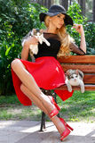 Beautiful blond woman in a black hat with long legs sitting on a bench holding the cute cat Royalty Free Stock Images