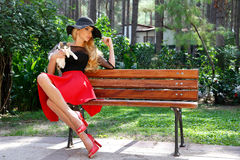 Beautiful blond woman in a black hat with long legs sitting on a bench holding the cute cat Stock Photos