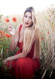 Beautiful blond woman in a wheat field with poppies at sunset Royalty Free Stock Photos