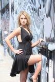 beautiful blond woman young Στοκ εικόνα με δικαίωμα ελεύθερης χρήσης