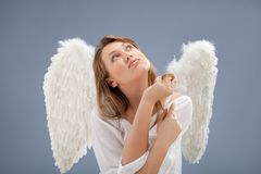 Beautiful blonde angel against grey  background Stock Image