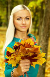 Beautiful blonde in the autumn weather holding an armful of leaves Royalty Free Stock Images