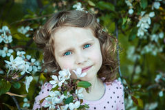 Beautiful blonde blue-eyed girl. In a flowering apple orchard royalty free stock photos