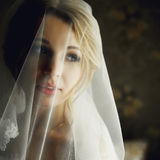 Beautiful blonde bride in make-up and veil in a stylish white dr Stock Photos