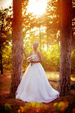 Beautiful blonde bride in white dress Stock Images