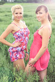Beautiful blonde and brunette in a field. Beautiful blonde and brunette in summer dresses posing in a oat field, in a nature, fashion photography Stock Photo