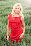 Beautiful blonde in a field. Beautiful blonde in a red dress posing in a oat field, in a nature, fashion photography Royalty Free Stock Photography