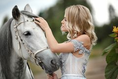 Beautiful blonde girl in dress strokes a gray horse on nature in. Summer stock photography