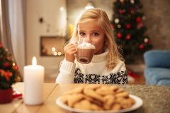 Beautiful blonde girl drinking cacao with marshmallow, looking a. T camera on Christmas breakfast Stock Images