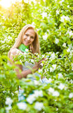 Beautiful blonde girl in the garden on a sunny day Royalty Free Stock Photography
