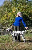 Beautiful blonde girl handler and Dalmatian in front Royalty Free Stock Image