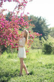 Beautiful Blonde Girl Holding Branch of Cherry Tree in Blooming Spring Park Royalty Free Stock Photo