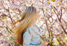 Beautiful blonde girl with long hair in a blue dress on a background of pink cherry blossoms in spring stock photos