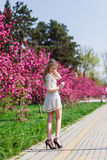 Beautiful blonde girl with long wavy curls in a white dress walk in the park among the pink trees, stunning makeup. Beautiful blonde girl with long wavy curls in stock photos