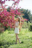 Beautiful Blonde Girl Looks to Cherry Trees in Blooming Spring Park Stock Image