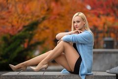 Girl with perfect legs posing in the autumn park. Beautiful blonde girl with perfect legs posing outdoor on the street of autumn park in the lights of setting royalty free stock image