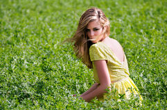 Beautiful blonde girl sitting in a meadow Stock Photography
