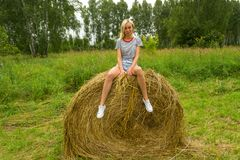 A beautiful blonde girl smiles and holds a bunch of grass between her legs and sits on a large round stack of dry hay collected s royalty free stock images