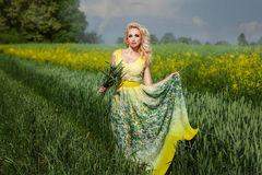 Beautiful blonde girl standing  field with ears of corn hand. Stock Images