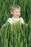 Beautiful blonde kid in wheat field at sunset. Smile Stock Photography
