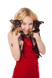 Beautiful blonde little girl holding two puppies wearing red dre Royalty Free Stock Photo