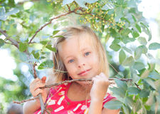 Beautiful blonde little girl on nature Royalty Free Stock Photo