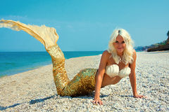 Beautiful blonde mermaid Royalty Free Stock Photos