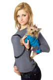 Beautiful blonde posing with puppy. Isolated Royalty Free Stock Image