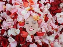 Beautiful blonde in rose petals Stock Photo