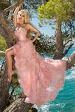 Beautiful blonde sexy shapely female model in a pink ballroom amazing carnival evening gown, wedding lies on the old tree Stock Photography