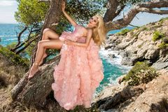 Beautiful blonde sexy shapely female model in a pink ballroom amazing carnival evening gown, wedding lies on the old tree. In the background you can see rough Stock Image