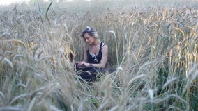 Beautiful blonde sits among ripe wheat ears and uses a laptop stock footage