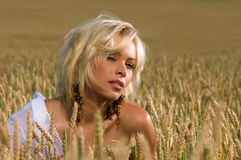 Beautiful blonde sitting on a field of wheat Royalty Free Stock Photography