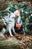 Beautiful blonde sitting in winter park and looking at siberian husky. Symbol of new year 2018 stock photography